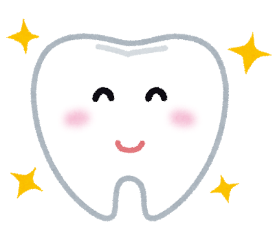 歯についての自主学習ノート