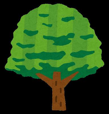 木についての自主学習ノート