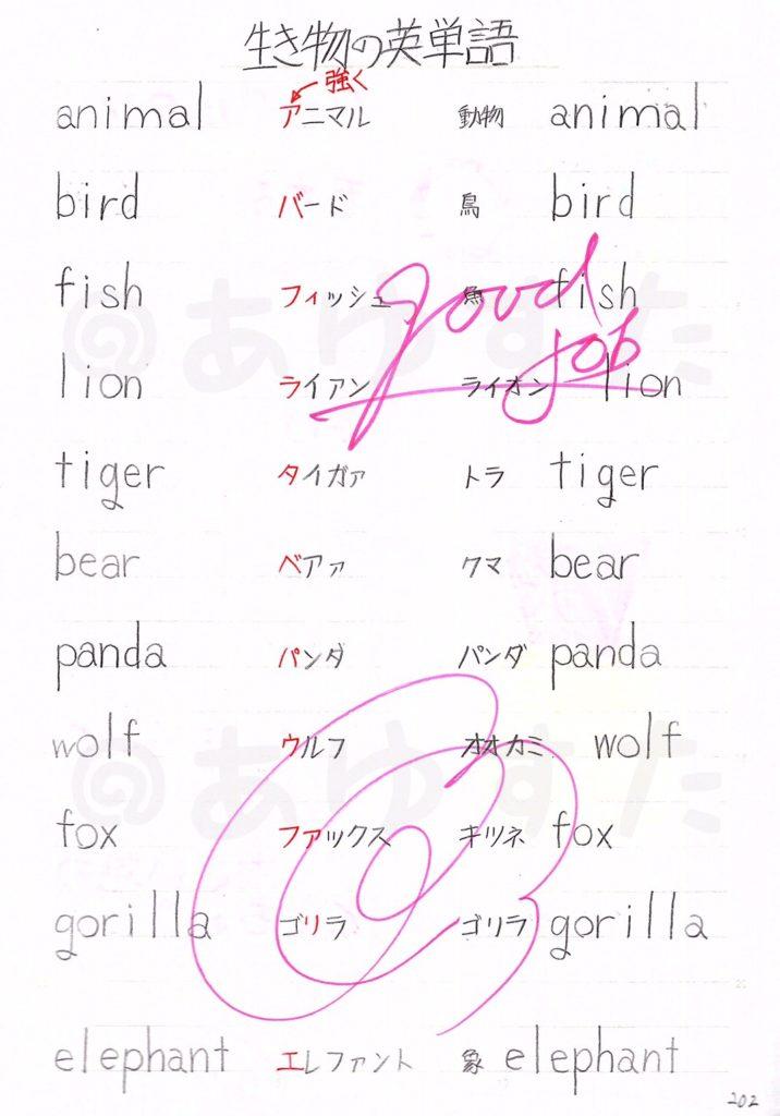 生き物の英単語についての自主学習ノート